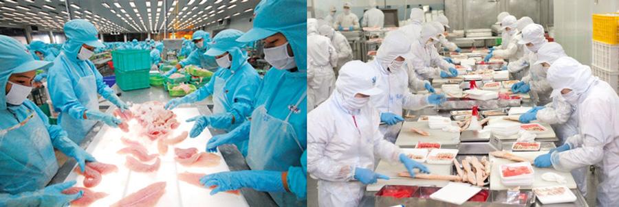 Thớt nhựa pp công nghiệp chế biến thực phẩm